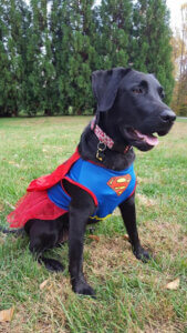 Delilah Super Girl